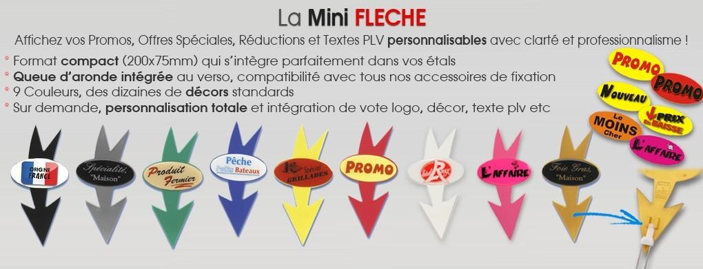 Mini FLECHES
